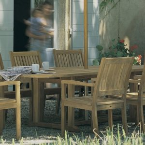 Gloster Dining Chairs